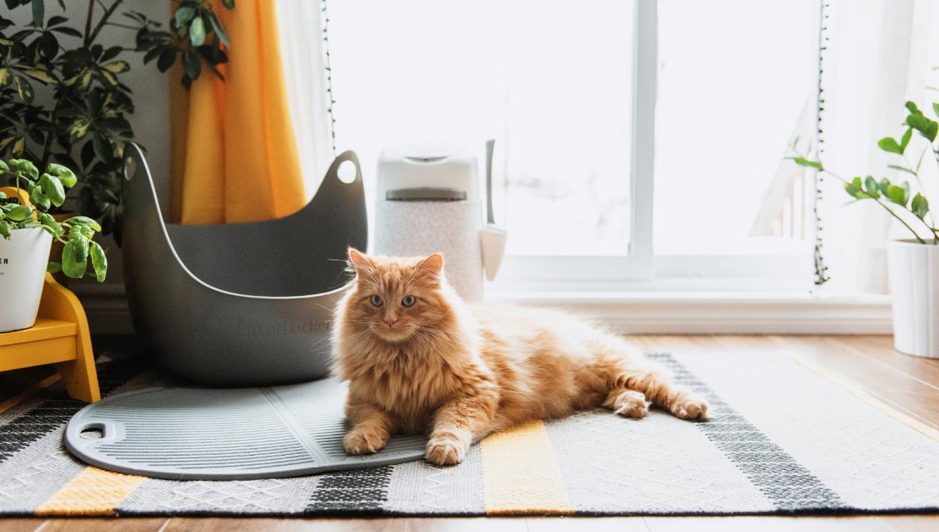 LitterLocker LitterMat Tapis à litière pour chat
