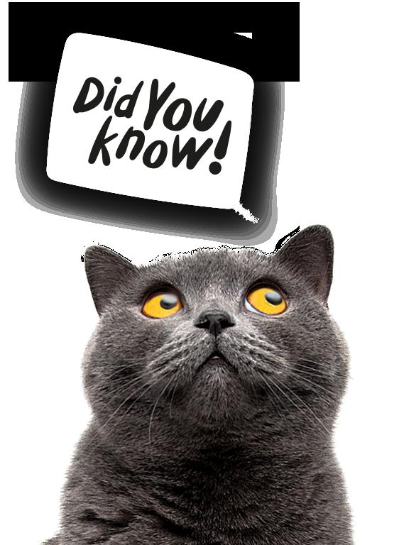 LitterLocker Did you know?