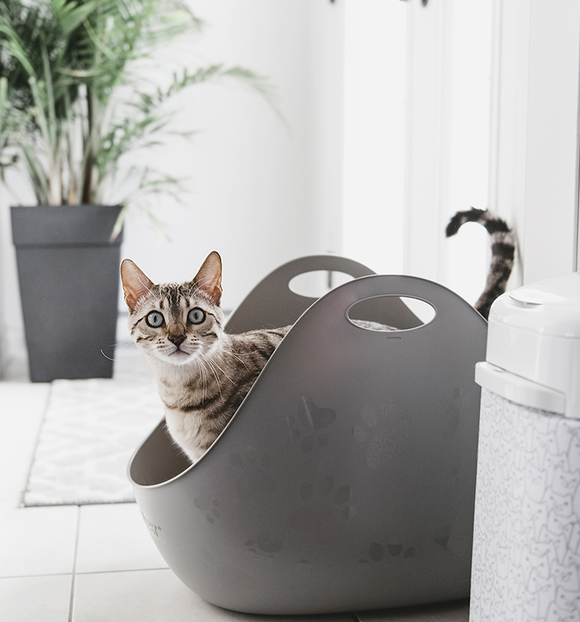 Litterbox by LitterLocker Grey Lifestyle