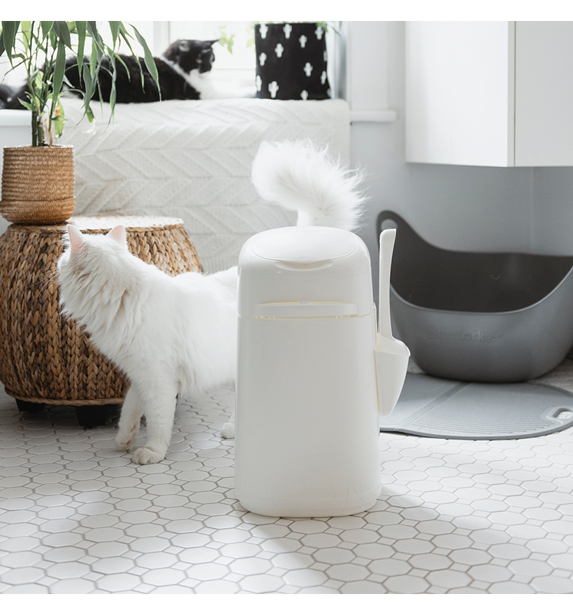 LitterLocker Design Plus Cat litter pail Lifestyle