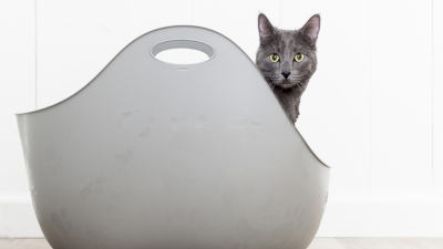 Cat LitterBox by LitterLocker Lifestyle