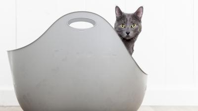 Cat LitterBox by LitterLocker Lifestyle
