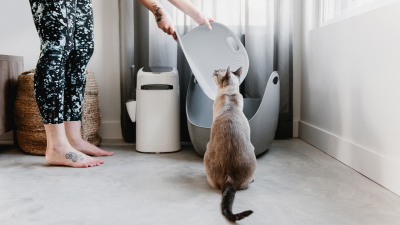 LitterLocker Blog article Cat Educator A litter mat adapted to the cat